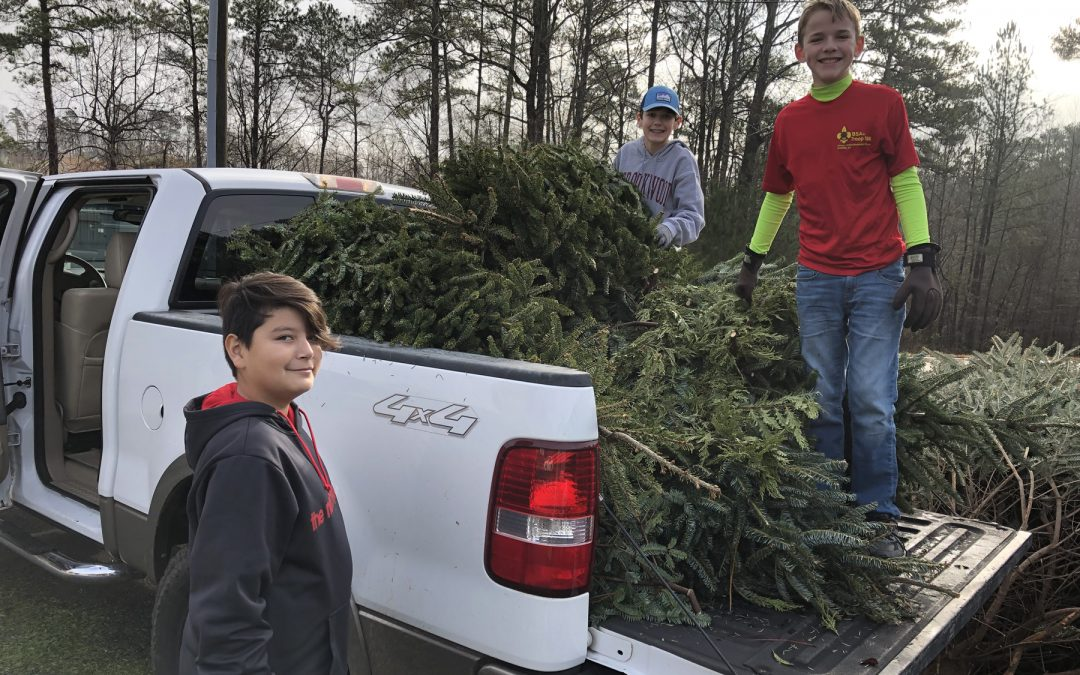 Christmas Tree Recycling for Boy Scout Troop 506